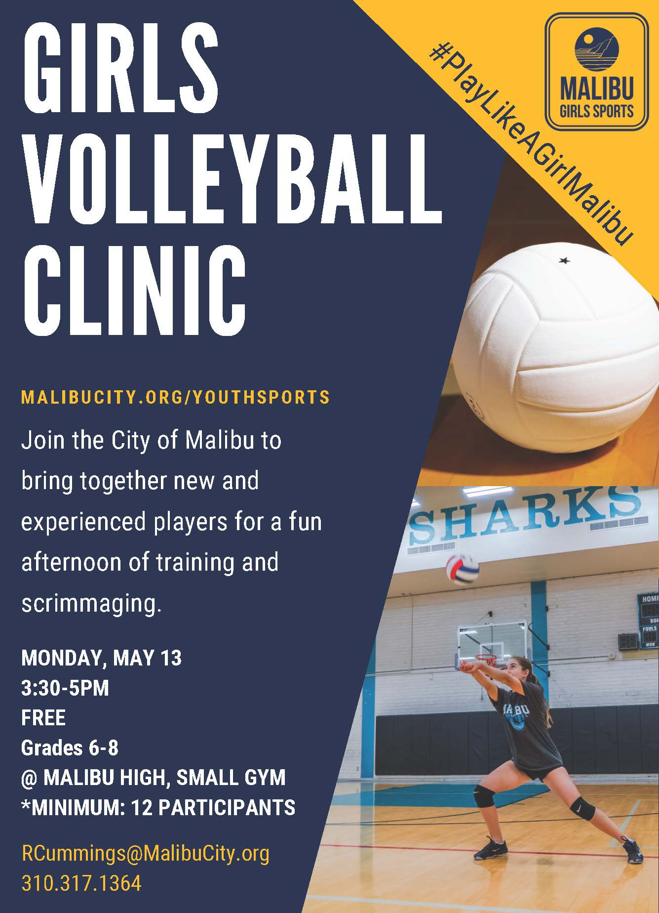 Girls Volleyball Clinic Flyer
