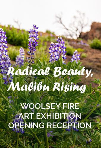 Radical Beauty 2 Newsflash