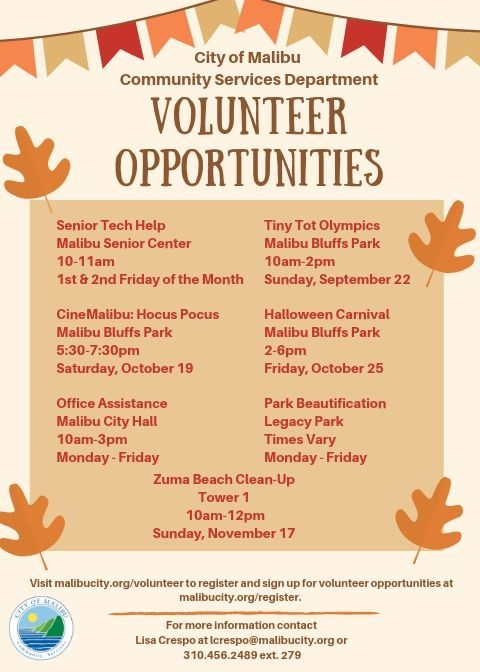 Fall Volunteer Flyer