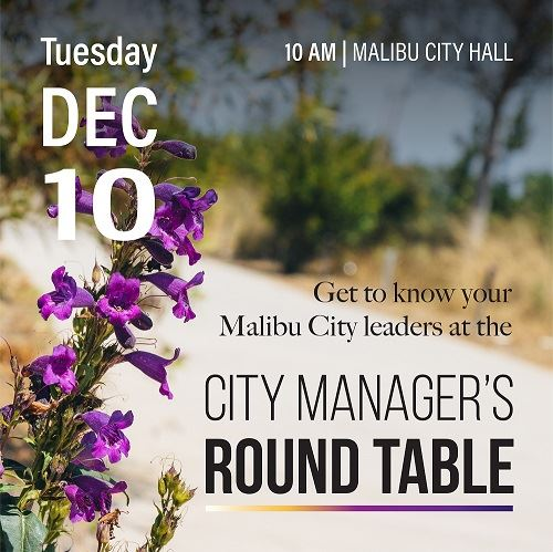 City Manager Roundtable