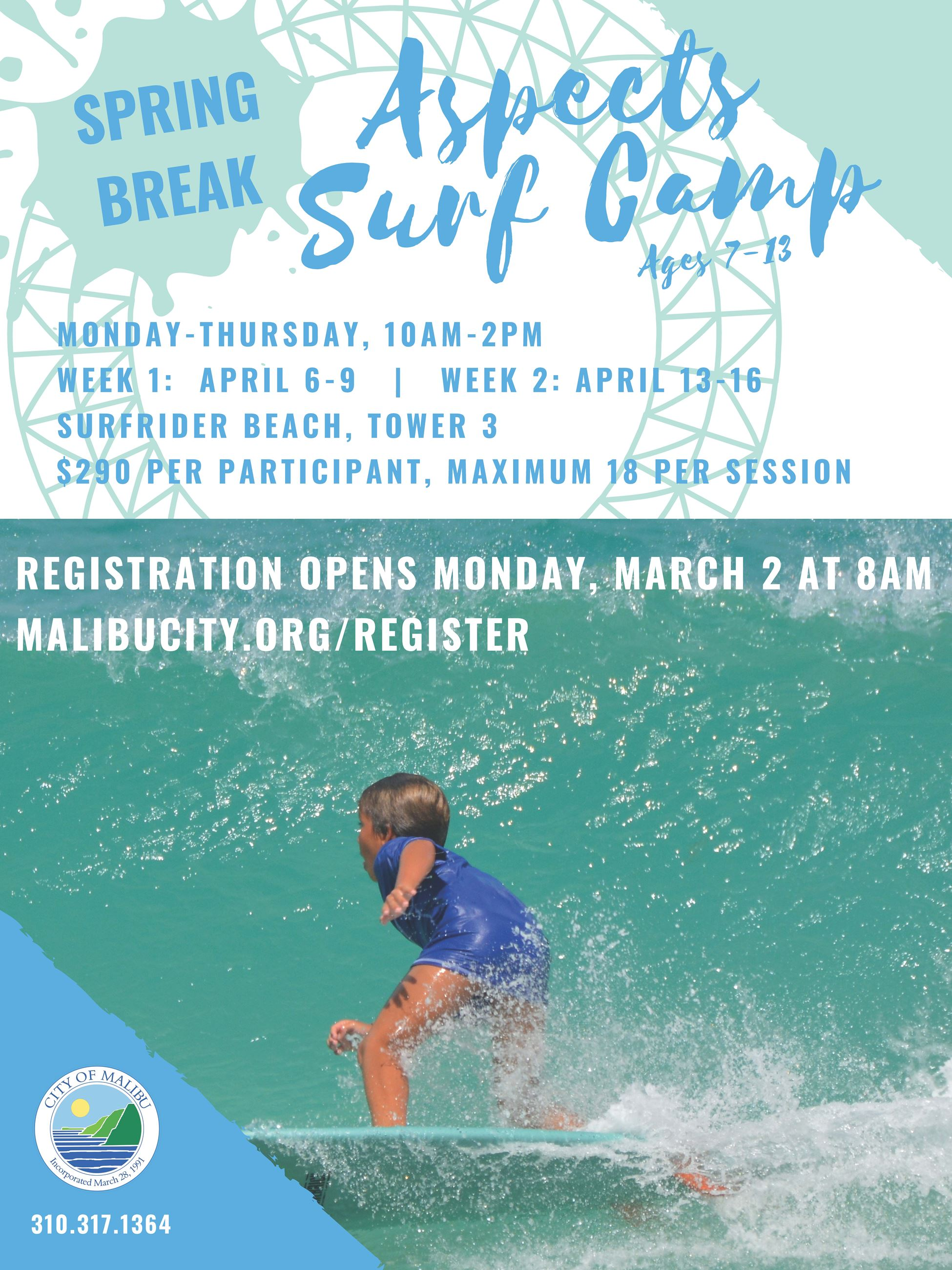 Spring Break Surf Flyer