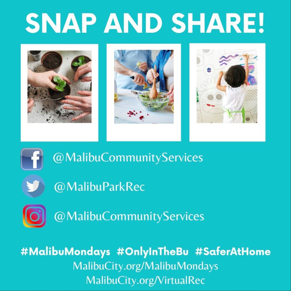 Malibu Mondays - Snap and Share
