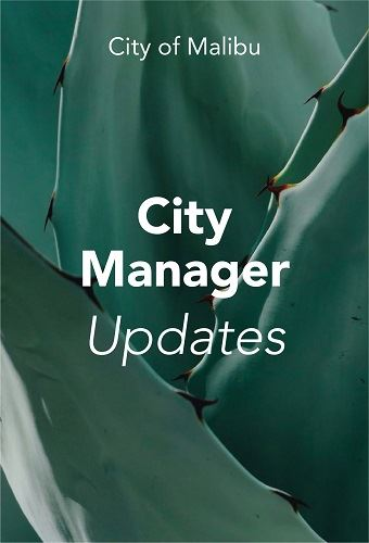 6.26 City manager update-02